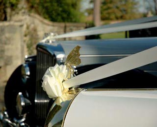Looking at the classic Bentley alongside Harriet's butterfly mascot